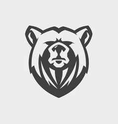 face bear vector image