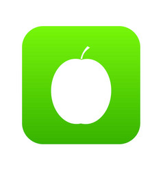 fresh apricot icon digital green vector image