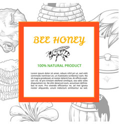 honey frame banner vector image