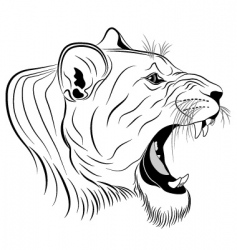 Lioness tattoo vector