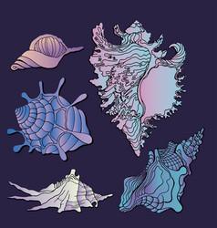 sea shells icon vector image vector image