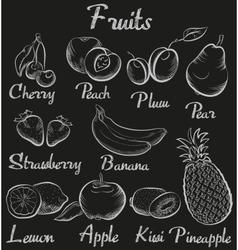 Vintage fruits Hand-drawn chalk blackboard sketch vector image