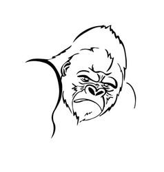 angry gorilla logo vector image