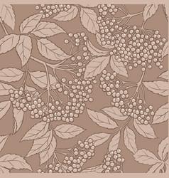 elderberry seamless pattern vector image