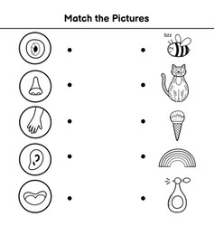 Five senses matching game for kids match vector