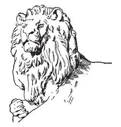 Head of companion have lion sculpture vintage vector