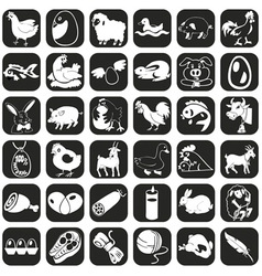 Icons farm animals and products vector