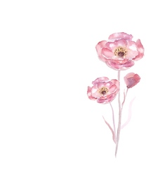 Pink watercolor flower vector