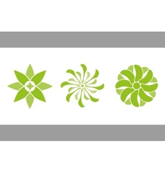 color flowers green vector image vector image