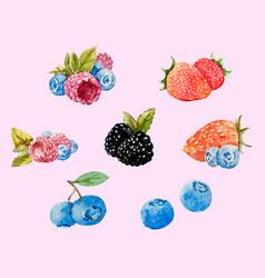 Watercolor berries set vector