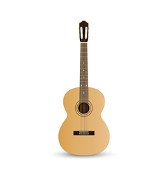 Acoustic classic guitar vector image vector image