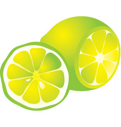cut yellow lemon vector image