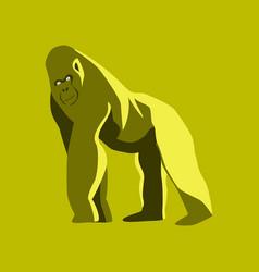 in flat style gorilla vector image
