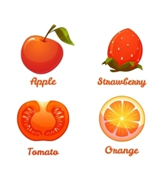 Set of food apple strawberry orange and tomato vector image vector image