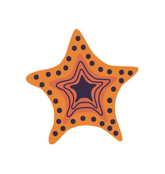 starfish marine or ocean creature vector image