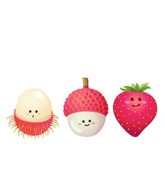 cute fruits strawberry lychee litchi rambutan vector image