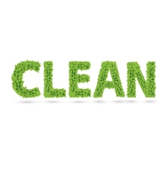 Clean text of green leaves vector image vector image