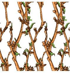 Appleflower sketch pattern1-05 vector