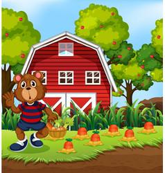 bear harvest fresh vegetable vector image