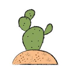 Cactus in soil vector
