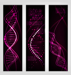 Dna molecule image vector