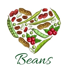 Heart of beans and nuts poster vector