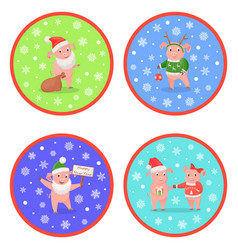 holiday new year pig colored round images vector image