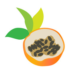 Isolated sweet granadilla cut vector