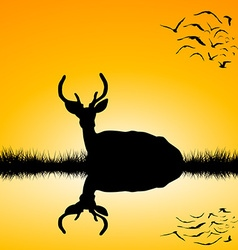 Landscape with deer stag silhouette at sunset vector