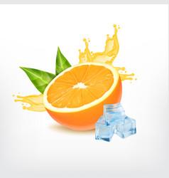 orange fruit with splashing juice vector image