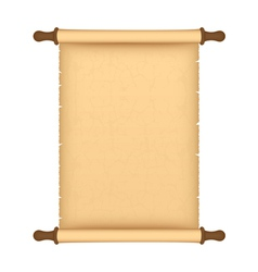 parchment roll vector image vector image