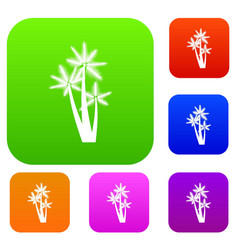 Three tropical palm trees set collection vector