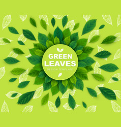 background with green leaves in a circle template vector image