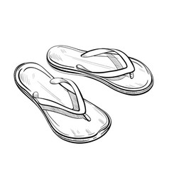 beach slippers sketch vector image