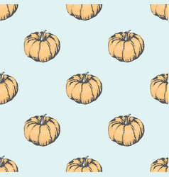 big ripe pumpkin in seamless pattern vector image