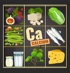 Calcium in food vector