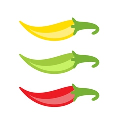 Colorful Chilli Peppers Isolated vector image
