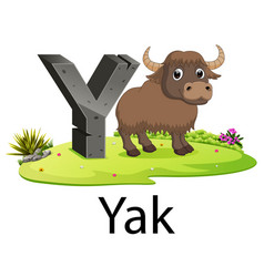 Cute ancient animals alphabet y for yak vector