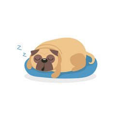 Cute pug dog character sleeping ona blue mat pet vector