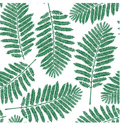 fern leaf pattern vector image