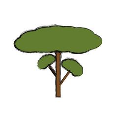 Isolated big tree vector