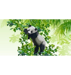 Panda on a tree in the jungle vector image