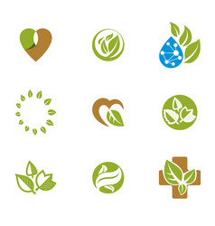 Phytotherapy metaphor graphic emblems collection vector