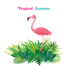Pink flamingo with tropical jungle vector