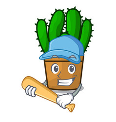 Playing baseball spurge cactus in a flowerpot vector