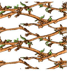 appleflower sketch pattern1-06 vector image vector image