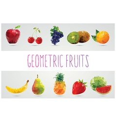 Collection of geometric polygonal fruits triangles vector image vector image