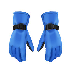 blue winter gloves vector image vector image
