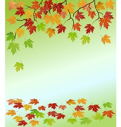 Frame of the branches of a maple vector