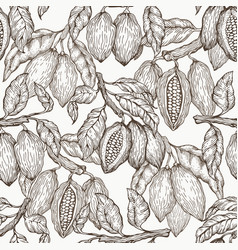 cocoa seamless pattern chocolate cocoa beans vector image